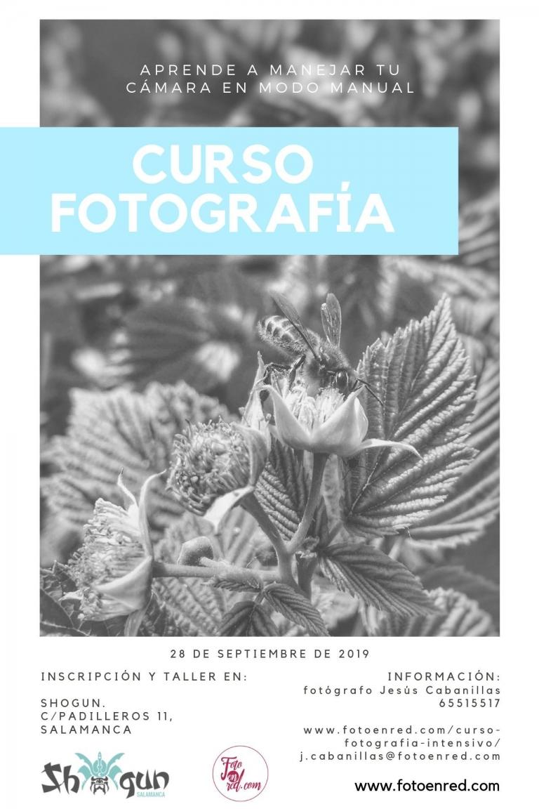 curso fotografía Salamanca